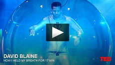 The Never Give Up Attitude As Described By David Blaine